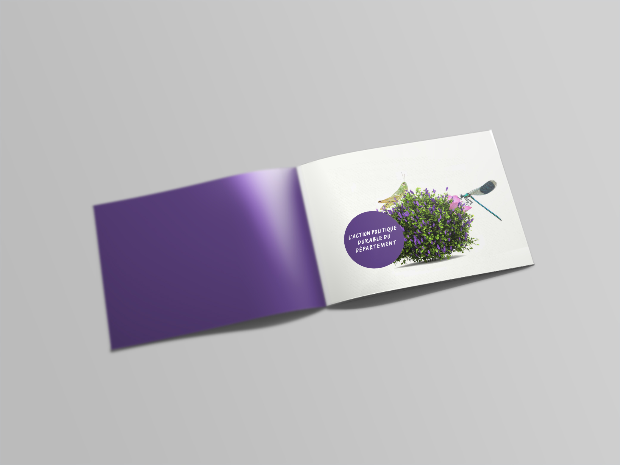 A4 Landscape Booklet Mockup – Free Version